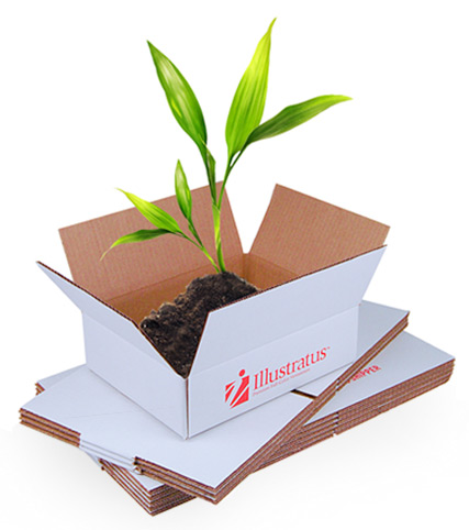 We plant one tree for every box of newsletters
